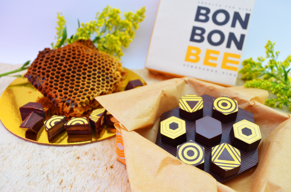 Organic handmade chocolate with polyfloral honey